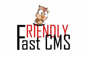 разработка под FriendlyCMS